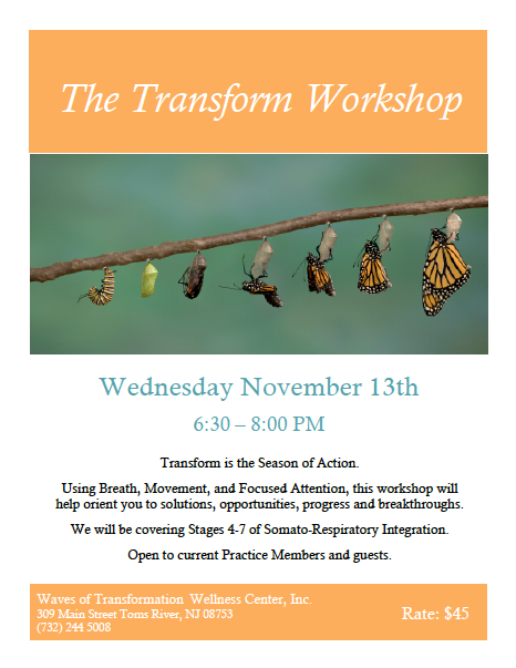 The Transform Workshop 2013