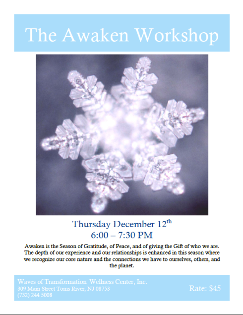 SRI Awaken Workshop 2013